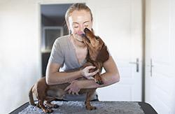 Ostéopathie pour chien