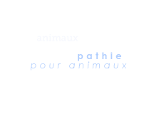 osteoanimaux.com